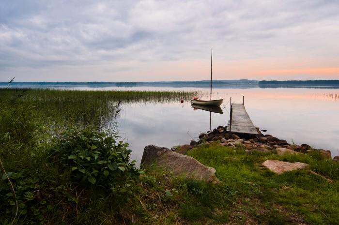 Träsket. Fotograf Lars-Göran Norlin