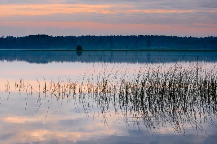 Bälingeträsket. Fotograf Lars-Göran Norlin