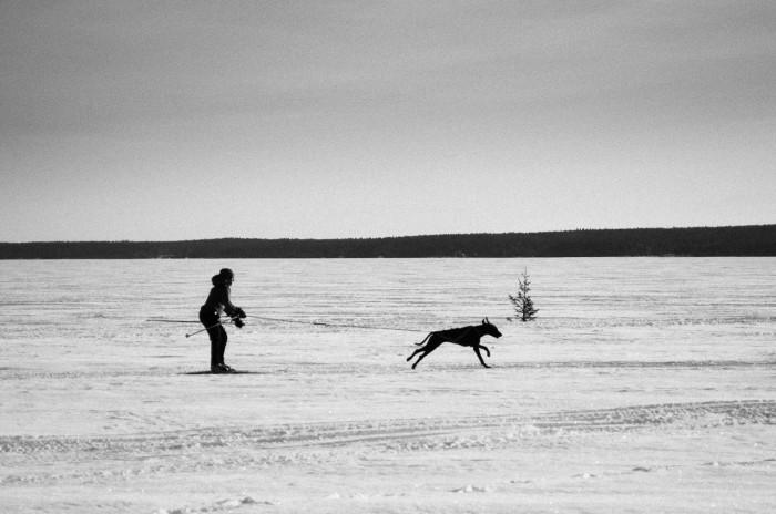 På isen vid Tomholmen, Luleå