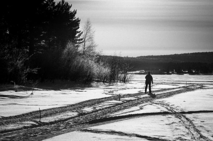 Skidåkare på isen vid Tomholmen, Luleå